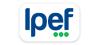 Ipef Ltda