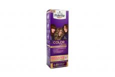Palette Color Creme Tinte Cabello Nº 4-89 Borgoña Intenso Caja Con 1 Tubo
