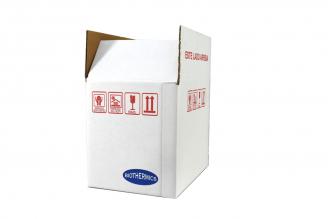 Kit Caja Biotérmica Con Gel Para Cadena De Frío 3 Litros
