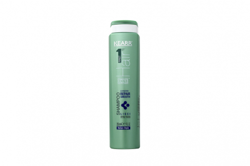 Shampoo Complete Repair Frasco Con 250 mL