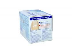 Loceryl 5 % Laca Caja Con Frasco Con 2.5 mL