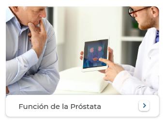 Funcion de la prostata